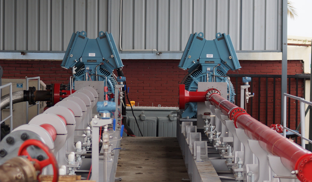 Borets horizontal pump systems HPS in Egypt